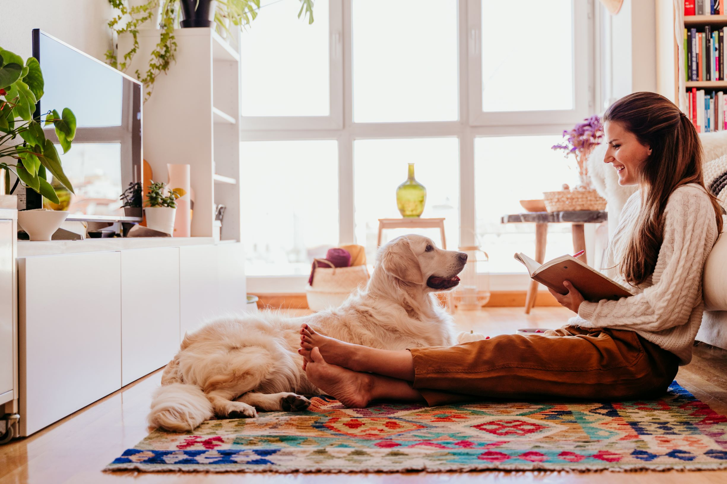 How to Keep your Home Smelling Fresh with Pets